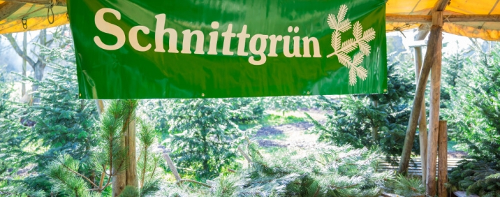 Schnittgrün / Reisig / Tannenzweige / Tannenreisig zum Verkauf in Ravensburg