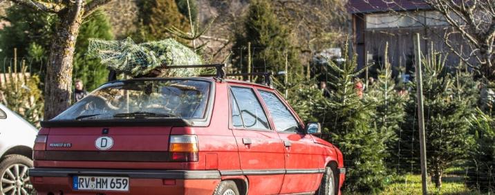 Anfahrt mit Auto zu Weihnachtsbaum Martin