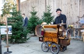 Weihnachtsbaummarkt Ravensburg - Unterhaltung