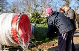 Weihnachtsbaum kaufen beim Hofgut Martin, Grünkraut, Ravensburg