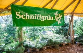 Schnittgrün kaufen beim Hofgut Martin, Grünkraut, Ravensburg