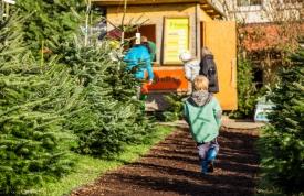 Weihnachtsbaummarkt Ravensburg - Spaß für Kinder