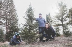 Weihnachtsbaum selber schlagen - Familie im Wald